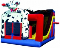 Bounce House: 5 in 1 Combos in Seattle